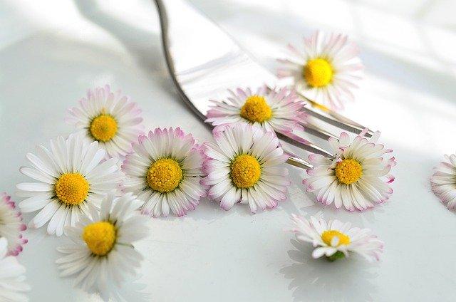 Les fleurs sauvages comestibles: des atouts culinaires et thérapeutiques